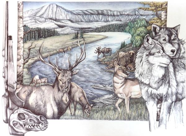 Yellowstone Story