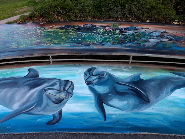 Malibu Dolphin Mural