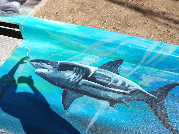 Malibu Great White Mural