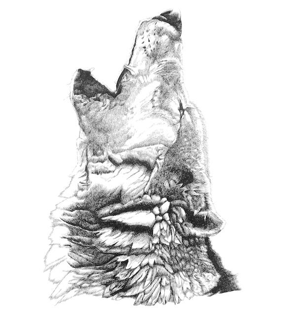 Spirit Caller Wolf