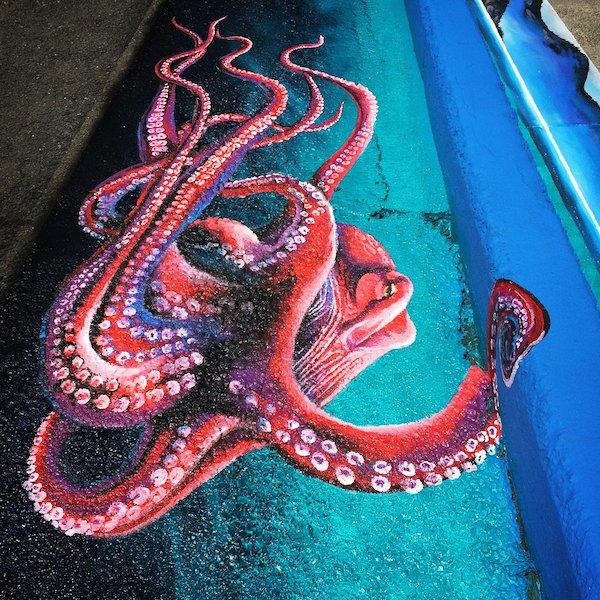 Full Octopus Drain