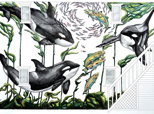 The Whale Museum Mural