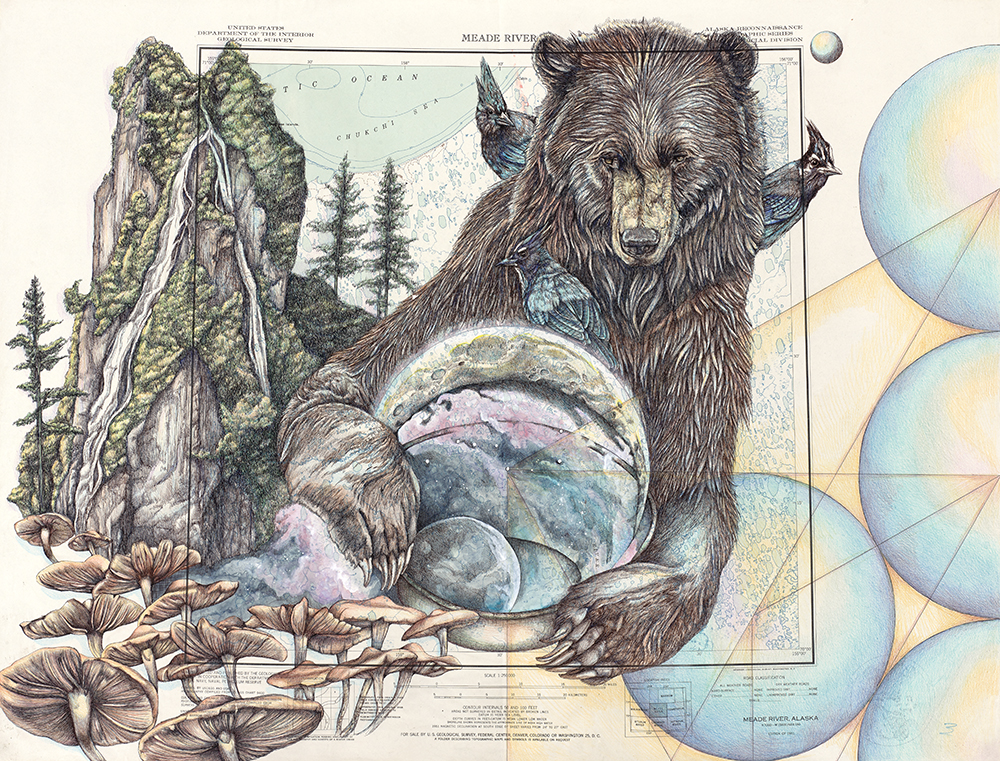Medicine - Alaska Series