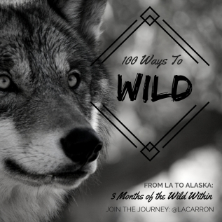 100 Ways to Wild: A 3 Month Look at the WildWithin