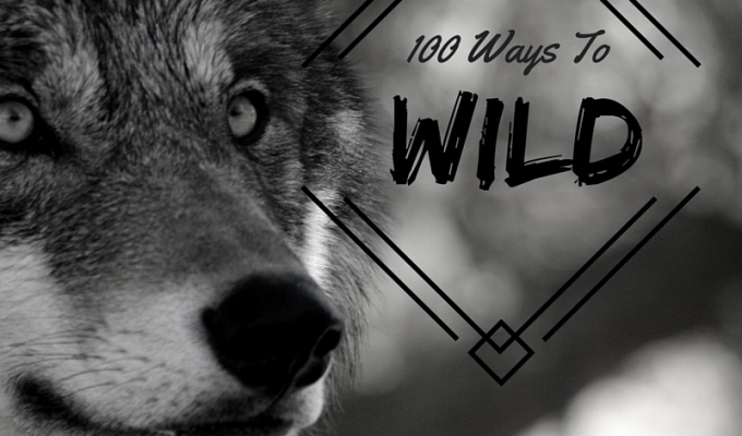 100 Ways to Wild: A 3 Month Look at the Wild Within