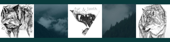 Fur and Tooth Banner